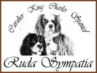 Ruda Sympatia